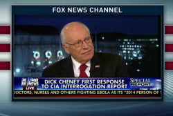 Cheney calls torture report 'deeply flawed'
