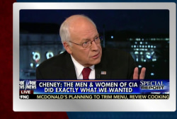 Dick Cheney minces no words
