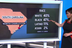 A racial breakdown of North Charleston