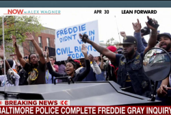 Baltimore police complete Freddie Gray...