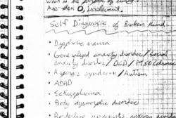 Prosecutors analyze Aurora killer's diary