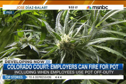 Colorado court: Employers can fire for pot