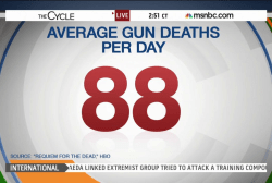 Re-igniting the gun debate