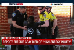 Autopsy released in Freddie Gray case