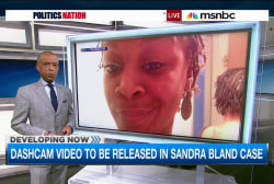 The details of Sandra Bland's traffic stop