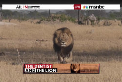 The dentist and the lion