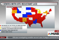 New warning about head lice