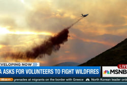 Volunteers asked to battle western wildfires