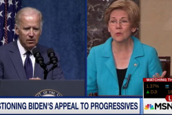 Will Biden appeal to progressives?