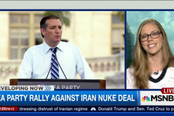 GOP rallies against Iran nuke deal in DC