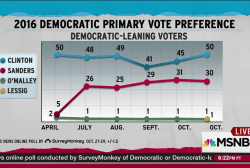 Democratic polling holds after Biden news