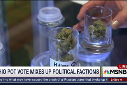 Ohio to Vote on Recreational Pot Legalization