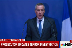 Paris prosecutor: Alleged mastermind not...