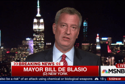 De Blasio: 'We are a country of immigrants'