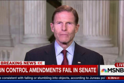 Senate rejects gun control amendments