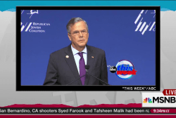 Jeb Bush flails as campaign becomes desperate