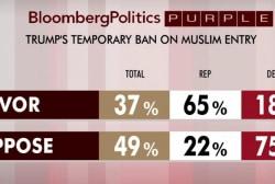 Republicans back Trump's Muslim ban: polls