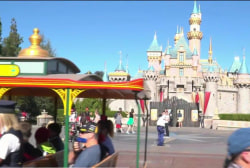 US theme parks ramp up security