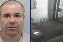 Mexican president: El Chapo has been captured