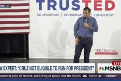 New Harvard Prof says Ted Cruz not eligible