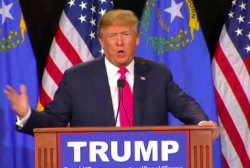 Is Donald Trump the answer to our problems?