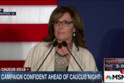 Palin accuses Steve King of 'huffing ethanol'
