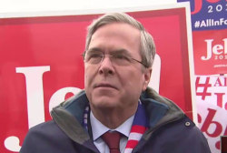 Bush 'feels good' heading into the NH primary