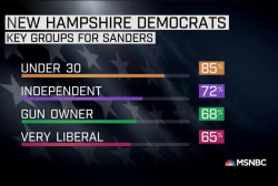 Sanders NH win carried by several key groups
