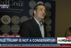 Cruz: Trump wants socialist healthcare