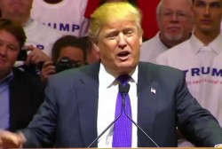 Trump says he'd like to punch protester in...