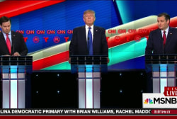 GOP presidential race descends into insanity