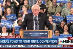 Sanders takes swipes at Clinton, Trump