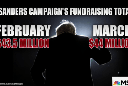 Money continues to pour in for Sanders...