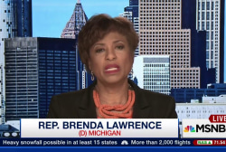 "Michigan Rep.: ""There has been a failure'"