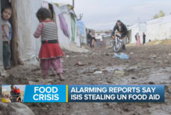 ISIS & the food crisis