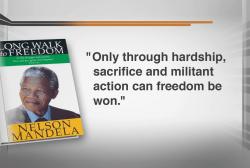 Mandela the revolutionary