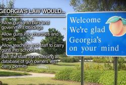 A state gun bill the NRA applauds