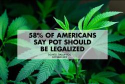 Revealing the anti-marijuana reformers