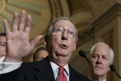 Why tea partiers want to 'ditch Mitch'