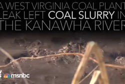 What happened after a coal plant leak in WV