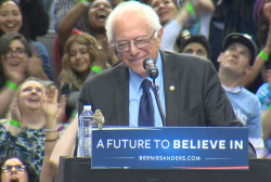 Sanders visited by bird at Portland rally