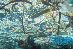 Plane search highlights ocean's trash problem