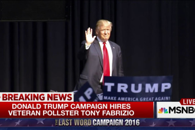 Donald Trump campaign hires veteran pollster
