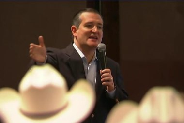 Cruz: I'm not a 'servile puppy dog'