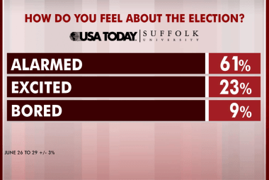 Majority are 'alarmed' by this election: poll