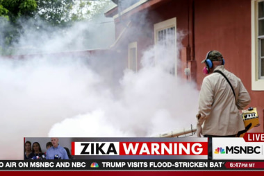 Zika cases confirmed in Miami Beach