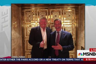 Farage a 'person of interest' in Trump probe