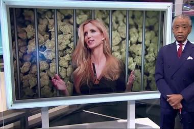 Gotcha: Ann Coulter!