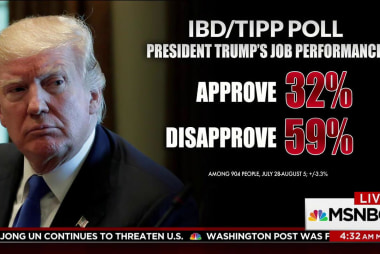 Trump losing support from GOP base: poll