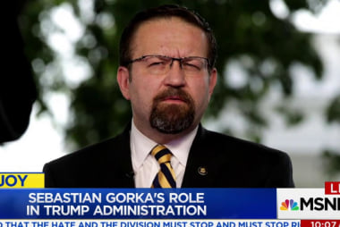 Who is White House aide Sebastian Gorka?